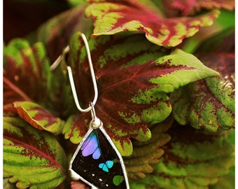Real Butterfly Wing Necklace. Purple, blue, and green Butterfly Wing.