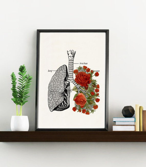 Christmas Sale Doctors gift Lungs with roses Print- A4 Wall art Human anatomy print Science prints,art Medical student gift SKA064WA4