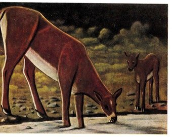 "Niko Pirosmani ""Roes by the Spring"" Postcard -- 1963, Izogiz Publ."