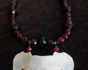 Real Fox Atlas Bone Necklace with Red and Black Beads