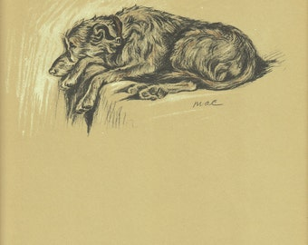 HOUND Vintage Dog Print, 1930s  Lucy Dawson, Antique  Wall Decor, Art Illustration to Frame, wolfhound animal Print, brown black, B-1