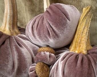 Velvet PUMPKINS & Velvet ACORNS - Real Pumpkin Stems and Real Acorn Caps - Shimmery Mauve