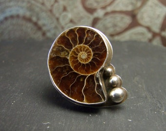 Ancient Ammonite Fossil Ring ~ OOAK Size Q 1/2