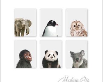 Zoo Animal Nursery Baby Art Prints, Animal Nursery Decor Baby Nursery Print Art Jungle Nursery Art Baby Animal Prints Zoo Animal baby