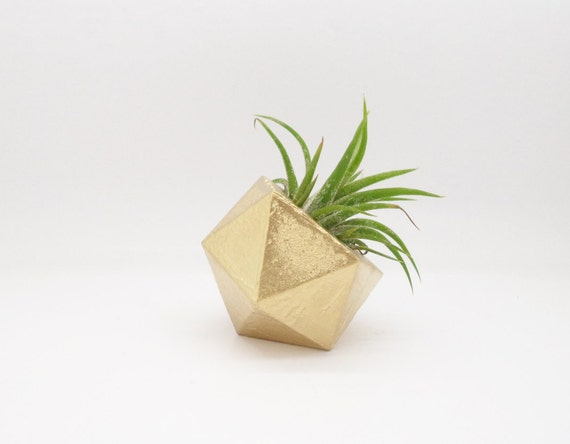 Gold geometric air plant holder modern mini planter for Geometric air plant holder