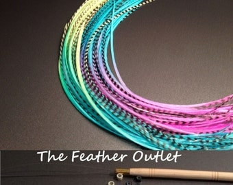 Feathers Hair Extensions Kit Lot 10 Grizzly long Real Blue Neon Tie Dye KIT