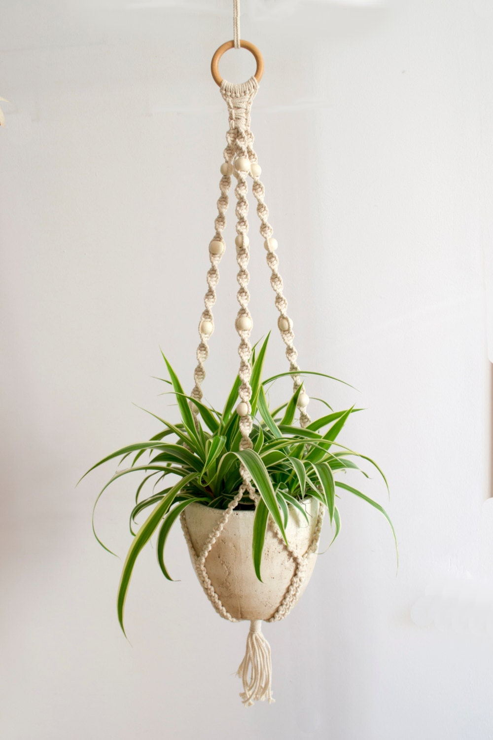 macrame plant hanger plant holder hanging planter home