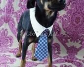Glow In The Dark Collar w/Tie and Swarovski Rhinestone Tie Tacks by Gloture