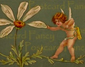 VINTAGE Postcard of an ENCHANTING Angel picking petals on daisy Do You Love Me?