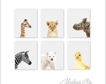 Animal Nursery Prints Animal Nursery Decor Baby Nursery Print Art Jungle Nursery Art Baby Animal Prints Zoo Animals