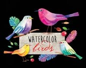 Birds Digital Clip Art Watercolor Colorful Yellow Lilac Green Branch Feather Leaves Cherry