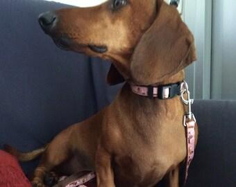 Leash for dachshund