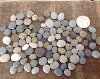 Terrarium supplies stones pebbles supplies tools for Where to buy flat rocks for crafts