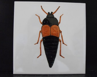 Ceramic Tile Painting. Original. Rove Beetle. Copper and Black bug creepie crawley insect plaque