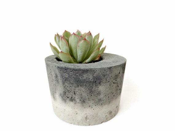 pot b ton pour cactus succulentes gris urbain industriel. Black Bedroom Furniture Sets. Home Design Ideas