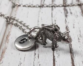 Dinosaur charm necklace, dino necklace, dinosaur jewelry, personalized, initial necklace, monogram, dino jewelry