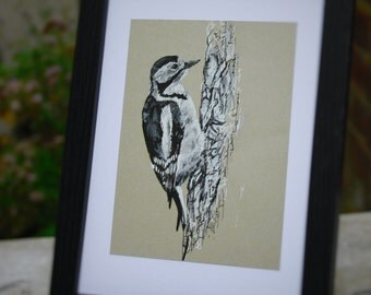 Woodpecker, Bird Art, Original Ink Drawing