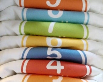 12 Monthly Onesies - Assorted Colors