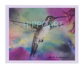 COSTA'S HUMMINGBIRD Greeting Card