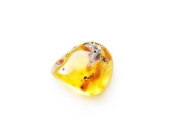 Baltic amber polished stone / Amber stone 1 Piece / 4991