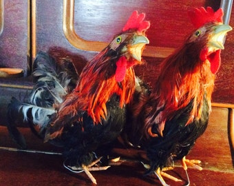 2 Red Roosters