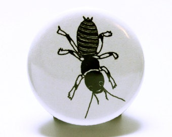 """Insect Button, Black and White Potato Bug Pinback Button, Hand Drawn Pins (1.25"""" small pinback badge)"""