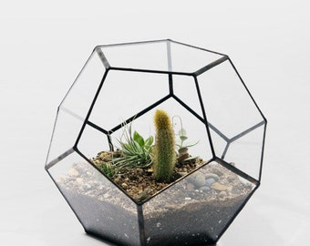 More in stock!!!! Geometric Glass Pot, Succulent Terrarium, Air Plant Planter