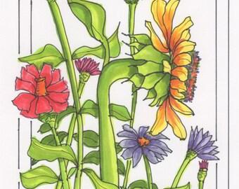 sunflower and zinnia flower part 1 art print