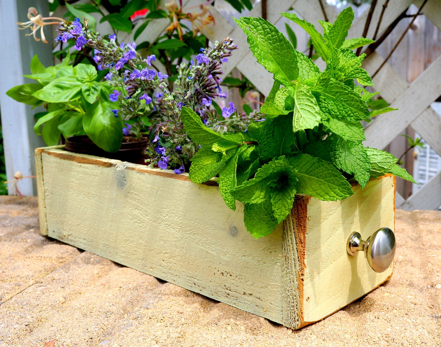 Storage Box Cedar Herb Planter Box Indoor Planter Window Box