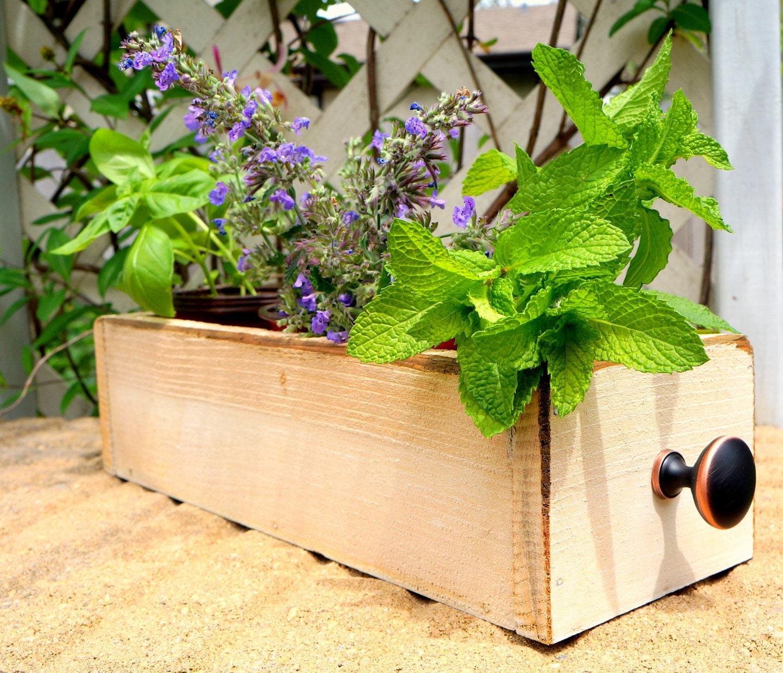 Cedar Herb Planter Box Indoor Planter Window Box Storage Box