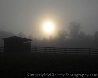Smokey Morning Barnyard