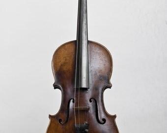 Antique Violin 1872 Davide Lotteri