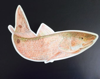 Redfish Decal