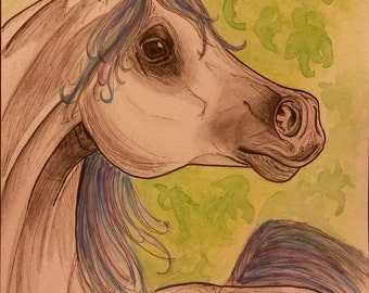 watercolor painting arabian horse