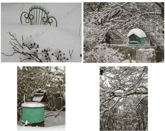 Set of 4 Photos, Winter Scenes, Bird House, Washing Machine, Chair, Branches, Trees, Snow Storm, 2015, Blizzard Thor, 5x7, 8.5x11, 11x14,