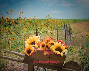 SunFlower Wheelbarrow #1