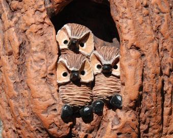 Saw Whet Owl Nest