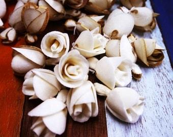 60 Rose Brown&White Sola Wood Diffuser Flowers 2 cm Dia.