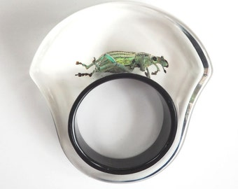 Funky black statement lucite ring with real beetle