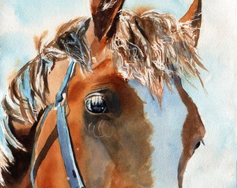 Original Palomino Pony  Horse Quarter Thoroughbred Arabian Warmblood Welsh art watercolor Painting Equine Equestrian  Decoration Decor