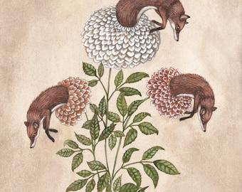 Fox Blooms - Print