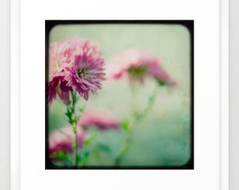 flower photo ttv pink green-Vintage Pastels fine art photograph 8x8