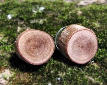 Myrtle Woodland Rustic Twig Wooden Stud Earrings by Tanja Sova