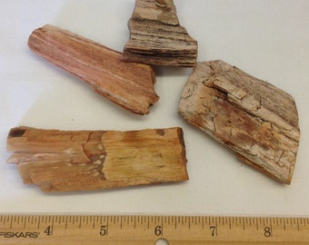 Petrified Wood Lot A11 - For Wire Wrapping - Pendant - Jewelry Supply  - Craft Supply - Earthy -