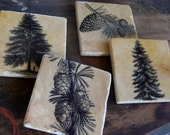 Pine Forest coasters - stone coasters - set of 4
