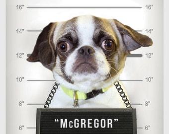 NEW, Custom Pet Portrait, Pet Shaming, Pet Mugshot, Pet Line-up, Funny Gift, Fast Gift, HILARIOUS Christmas Gift