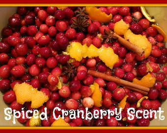 SPICED CRANBERRY Scented Soy Melts - Soy Wax Tarts - Holiday Fall Autumn Winter Scent - Wickless Candle - Highly Scented - Handmade In USA