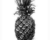 ananas plant  flower print watercolour art decor home ink graphic poster