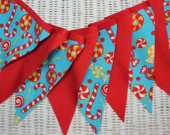 Free USA Shipping/Aqua and Red Fabric Banner/Carnival Banner/Photo Prop/Birthday Party Banner/Christmas Banner/Fabric Pennant/Fabric Garland