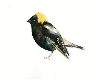 BOBOLINK Original watercolor painting 10x8inch
